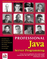Professional Java Server Programming: with Servlets, JavaServer Pages (JSP), XML, Enterprise JavaBeans (EJB), JNDI, CORBA, Jini and Javaspaces