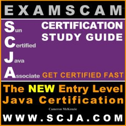 SCJA – Sun Certified Java Associate Certification Study Guide for Java 5, J2EE and J2ME Technology from ExamScam.com – The Pre SCJP, Programmers Certification
