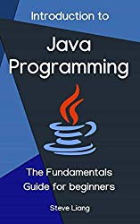Introduction to Java Programming: The Fundamentals Guide for beginners